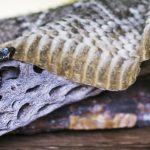 Level 1 – die Schlange, im Schamanismus Sachamama genannt